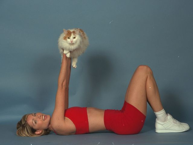 Exercise Trainer Cat - Bad