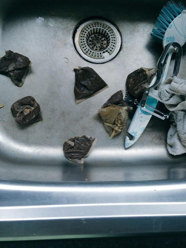 Teabags being left to rot in the sink.