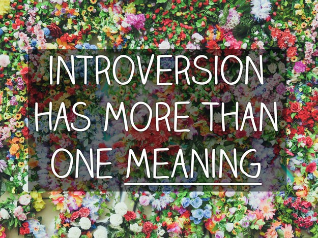 In fact, there are different kinds of introversion.