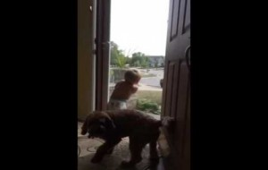 This Dog And Baby React The Same Exact Way To Daddy Coming Home